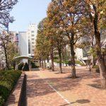 東京都調布市の一戸建て査定・価格・相場は?